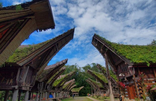Ruta Cultural Funeraria Tana Toraja