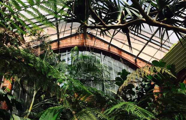 Jardin botanique metz metz nancy 2 exp riences et 1 photos for Jardin botanique metz