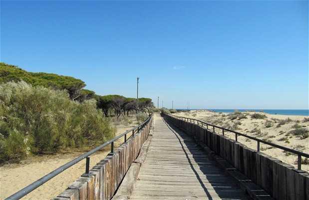 Playa Caminito Santana