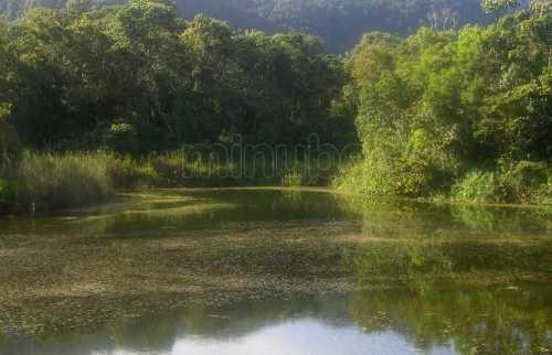 Laguna el blanquito