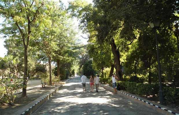 Les jardins de Murillo