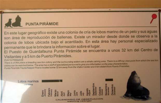 Centro de Visitantes Istmo Carlos Ameghino
