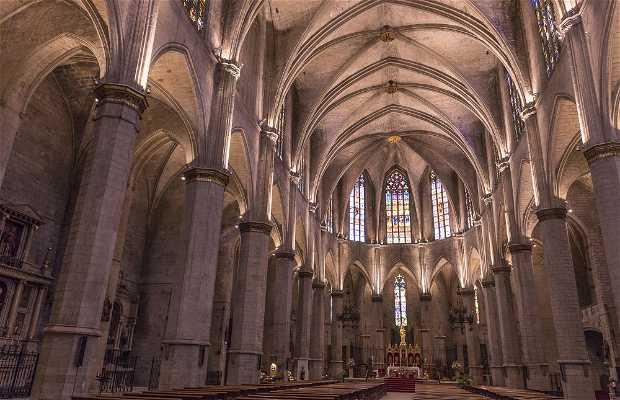Basílica de Santa Maria de la Seu