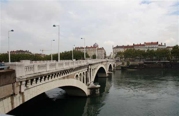 Puente Wilson