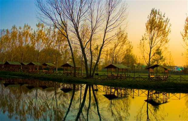 Parque Grassano