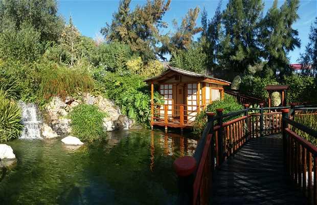 Jard n bot nico molino de inca en torremolinos 3 for Jardin botanico torremolinos