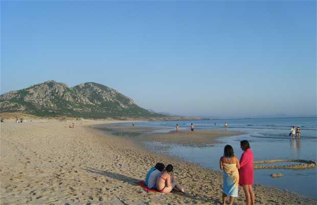 Playa Area Mayor