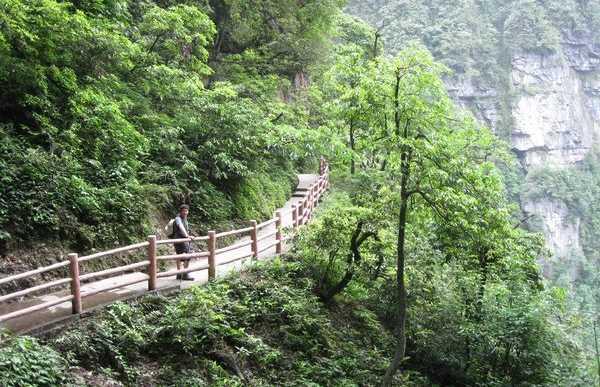 Les escaliers du mont Emei