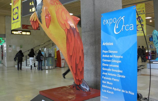 Expo Orca