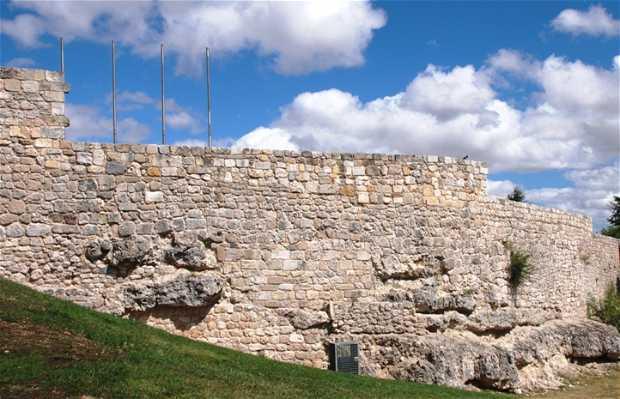 Château de Burgos