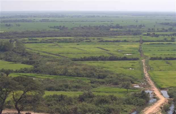 Moat Peam
