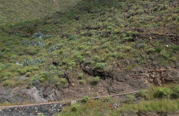 Igualero - Arguayoda