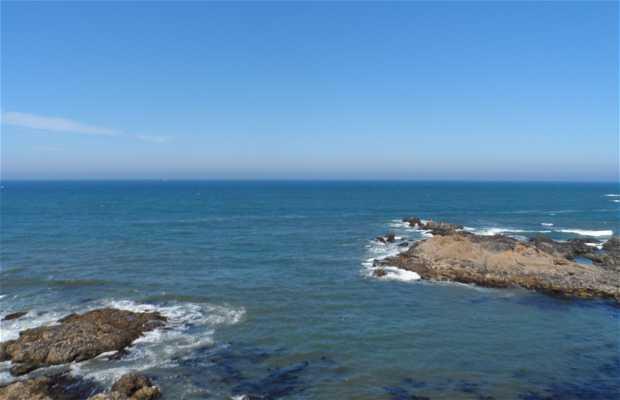 Playa de Leça