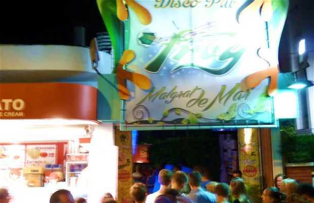 Disco Pub FROG