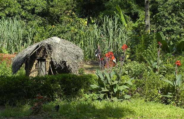 Parque nacional Montes de Udzungwa