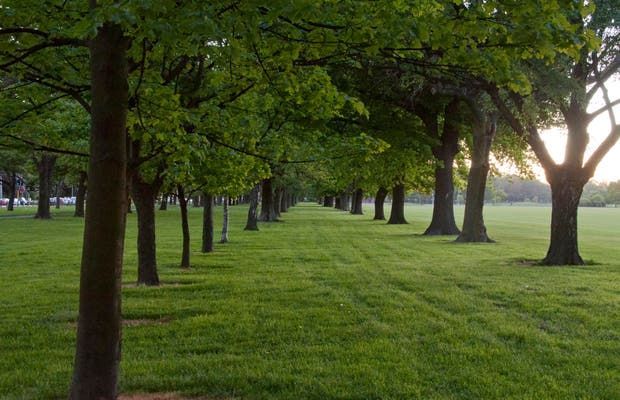 Hagley park a christchurch 1 opinioni e 4 foto for I nobili infissi opinioni