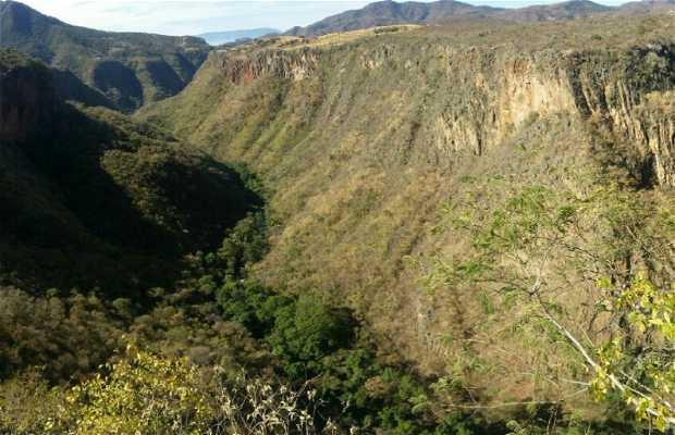 Sierra de Tapalpa