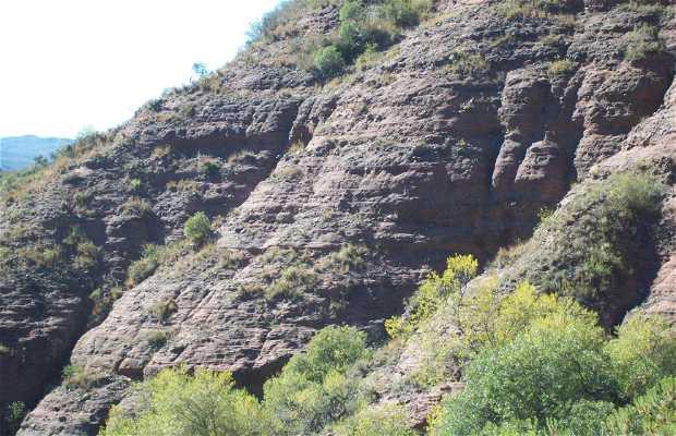 El Cerro Pajarillo