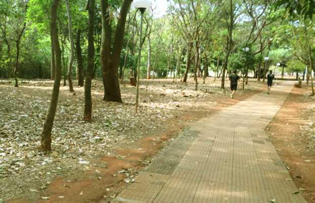 Parque Beija-Flor