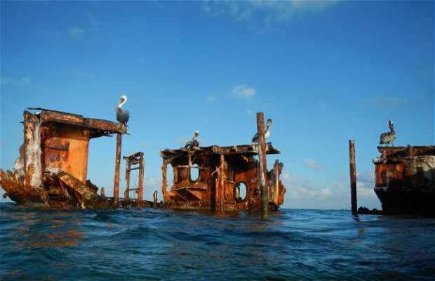 The Baboo Shipwreck