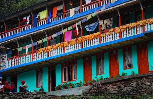 Hille, caserío de Ulleri (aldea del Annapurna)