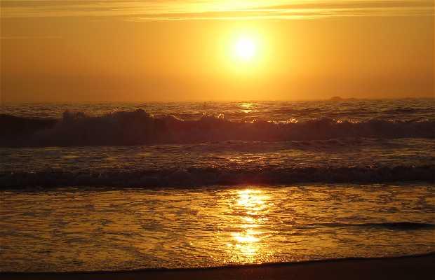 Praia de Esposende