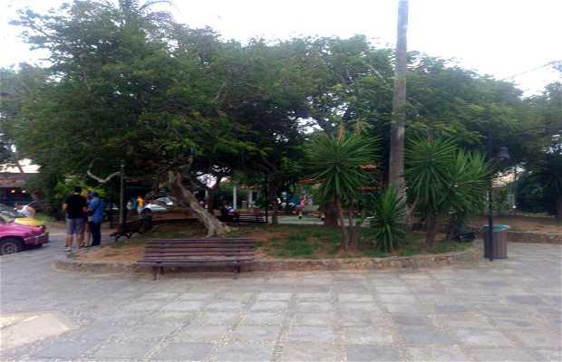 Praça Eugênio Honold (Praça dos Ossos)