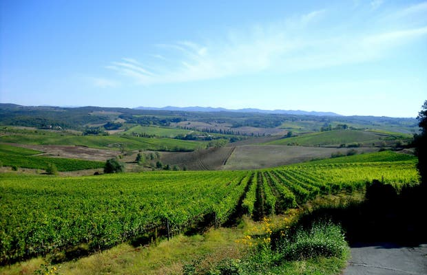 Chianti region