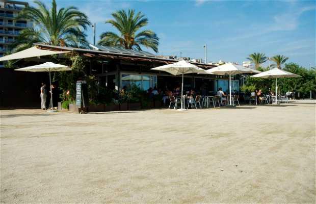Restaurant Lasal del Varador