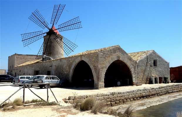 Musée del sale