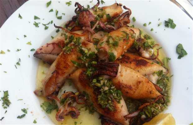 Fish Food Antonio