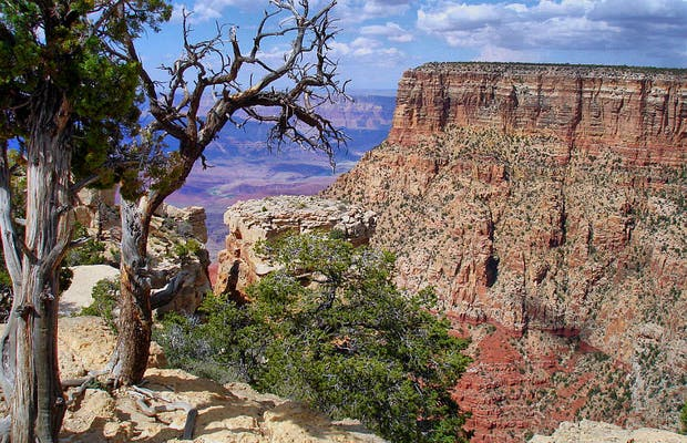 Moran Point in the Grand Canyon