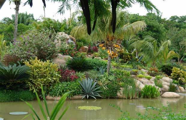La Rinconada Gardens