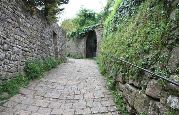Parque arqueológico Enrico Fiumi