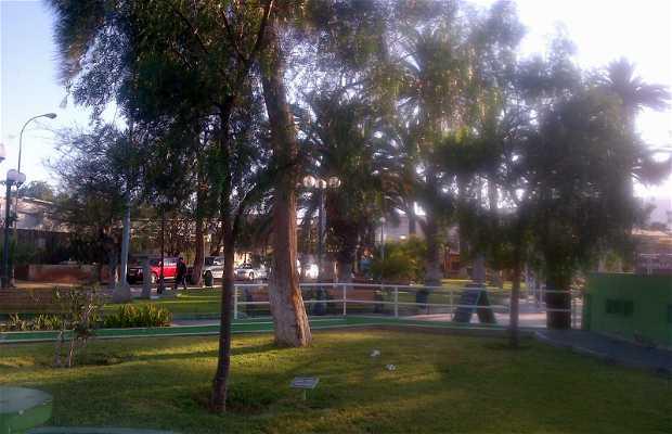 Plaza Arauco de Arica