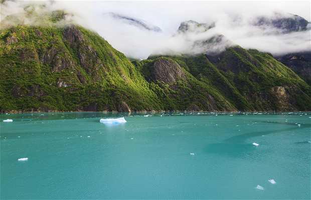 Parc national et réserve de Glacier Bay