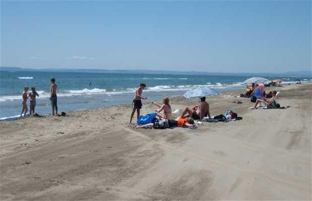 Playa de l'Espiguette