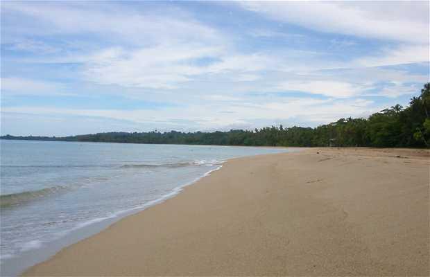 Spiaggia Punta Uva a Cahuita