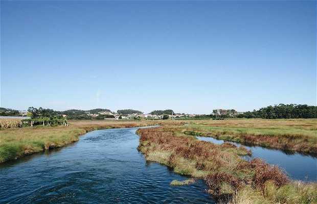 Desembocadura del río Umia