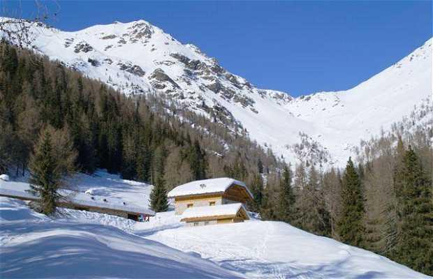Alpe Pozze