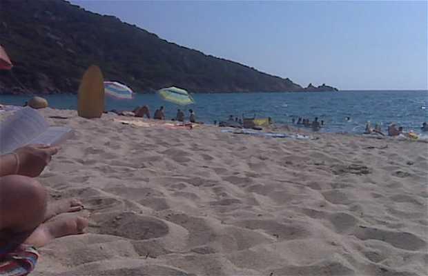 Playa de Tizzano