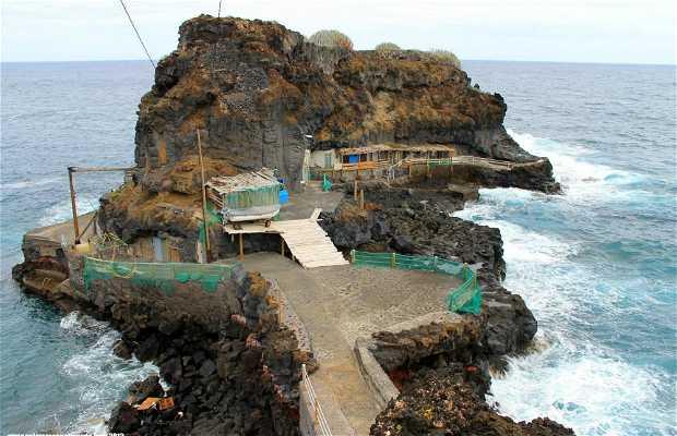 Talavera Port