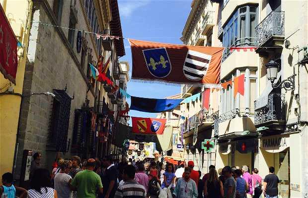 Calle mayor de Jaca
