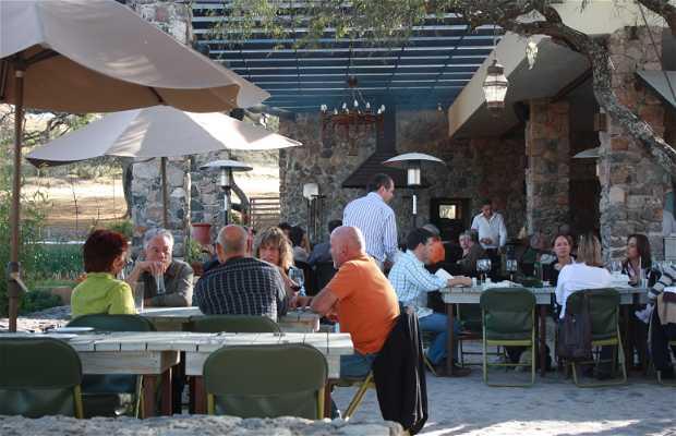 Restaurante BOCA BENTO BISTRO