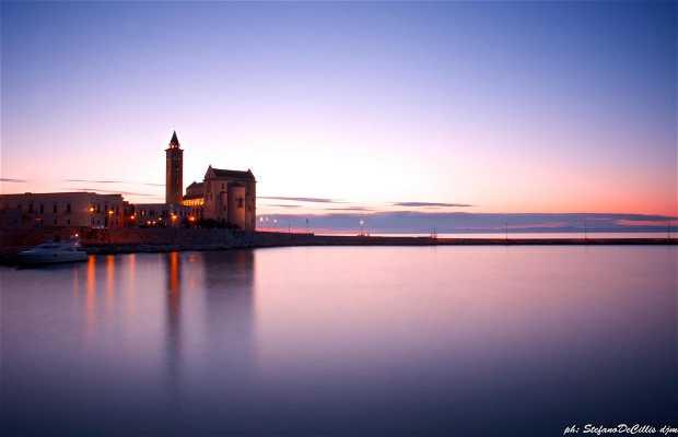 Harbour of Trani