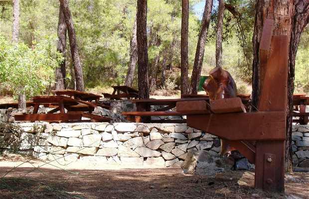 Picnic Site Monashilakas (Bosque de Paphos)