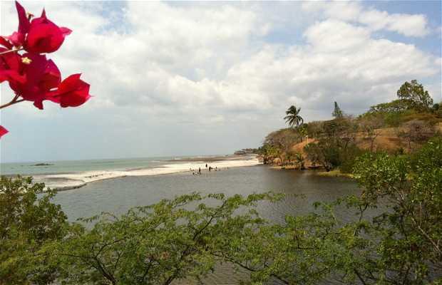 Playa de Coronado
