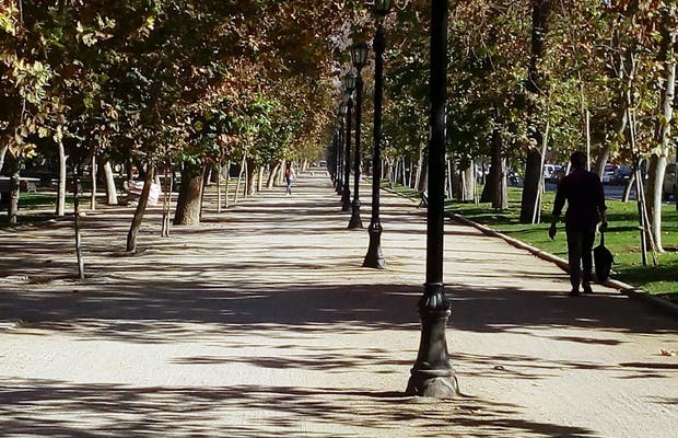 Parque Florestal