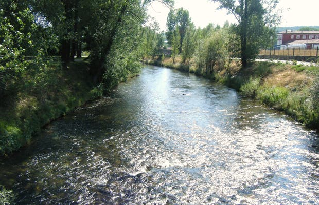 Carrion River
