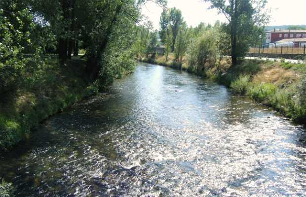 Río Carrion